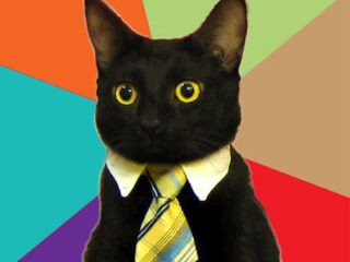 My newest meme obsession, Business Cat