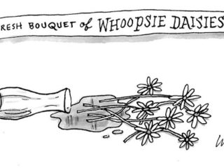 Whoopsie Daisies